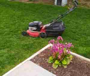 Image of a lawn mower and flower bed