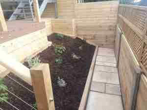 Image of the new raised beds and path with new timber boundary fencing