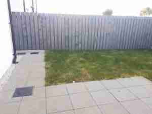 Image of a fence a Poor lawn and bare garden space