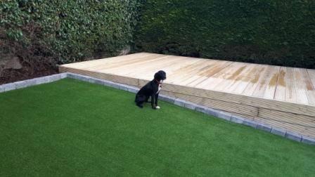 Pet friendly artificial lawn