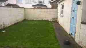 Image of garden before