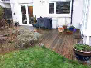 Rotting and slippery deck space