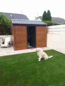 Image of dog on the artificial lawn