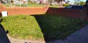 Weedy Front garden