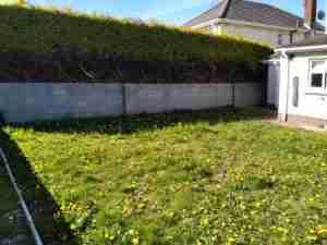 Image of weedy rear garden and bare block wall