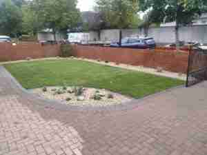 View of new turf lawn and mowing edge with gravel border bed and mixed cottage perennials
