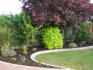 greenart-landscapes-trees-shrubs14